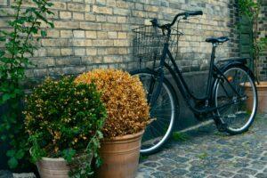 Murstensvæg med planter og cykler op ad